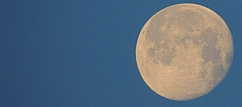 Night Reads Moon